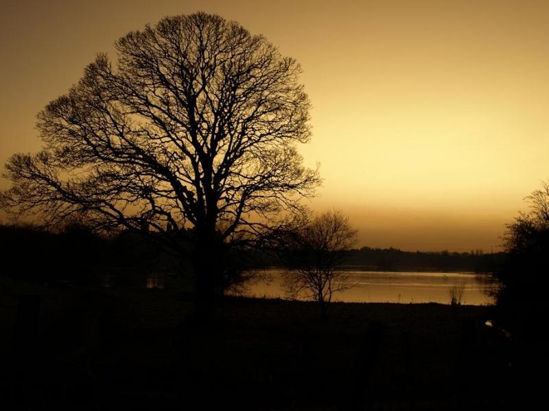 Scenery & Landscapes 18-2-018