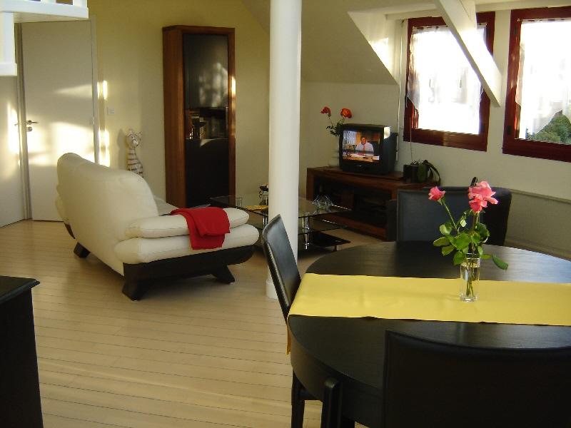 Besoin d' avis pour rideaux du séjour et cuisine. Salon_16