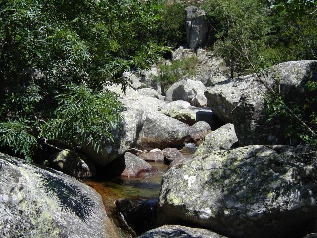 Photos de ruisseaux Cèvenols. Tarn_a10
