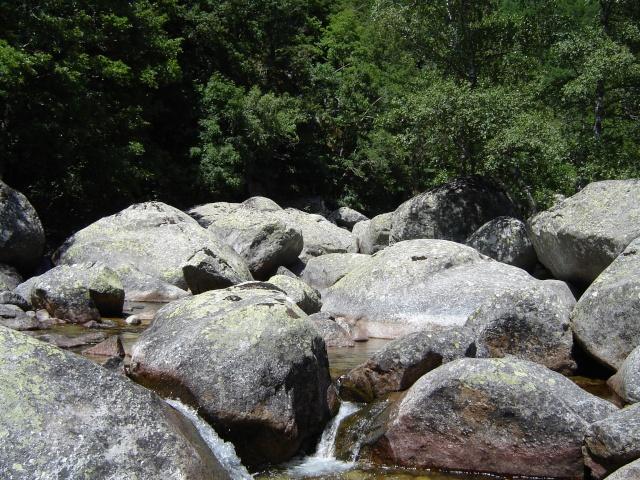 Photos de ruisseaux Cèvenols. Tarn_a11