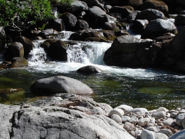 Photos de ruisseaux Cèvenols. - Page 2 Tarn_r12