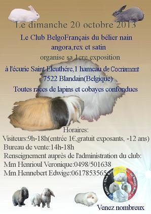 Expo Belgique, le 20 Octobre 2013. 7522 Blandain Copie_13