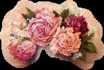 Fleurs: Les roses Mod_ar13