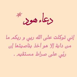هودٌ (عليه السلام) 19048310
