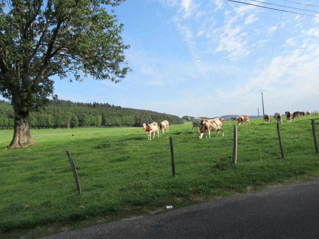 Grande traversée du Jura a VTT Img_0526