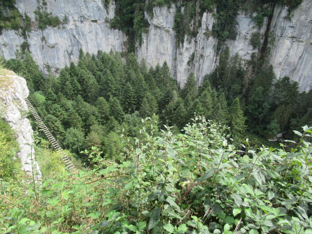Grande traversée du Jura a VTT Img_0534