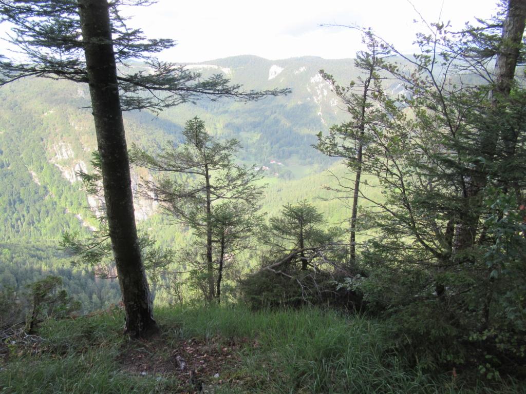 Grande traversée du Jura a VTT Img_0657