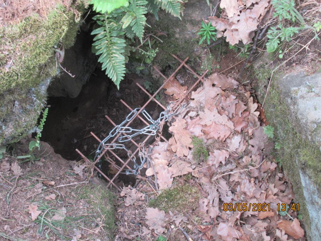 comptine : promenons nous dans les bois pendant  que ........ Img_1324