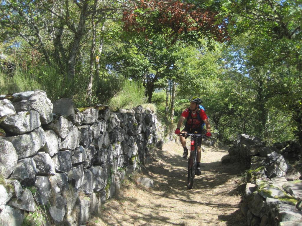 Chemin de Stevenson Img_3033