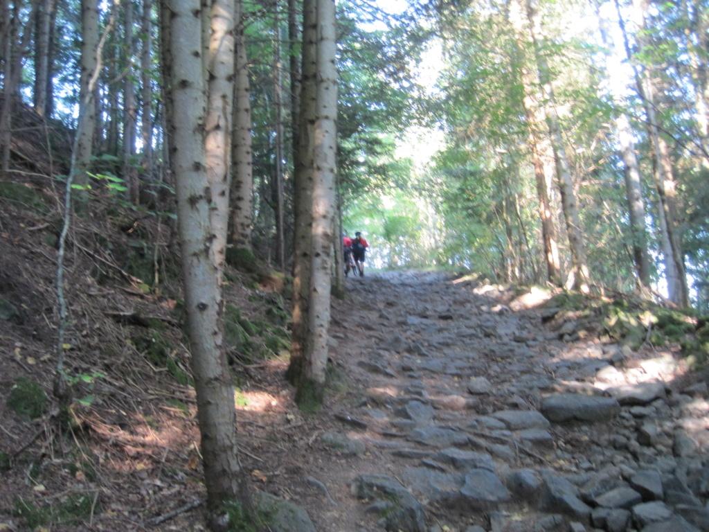 Chemin de Stevenson Img_3040