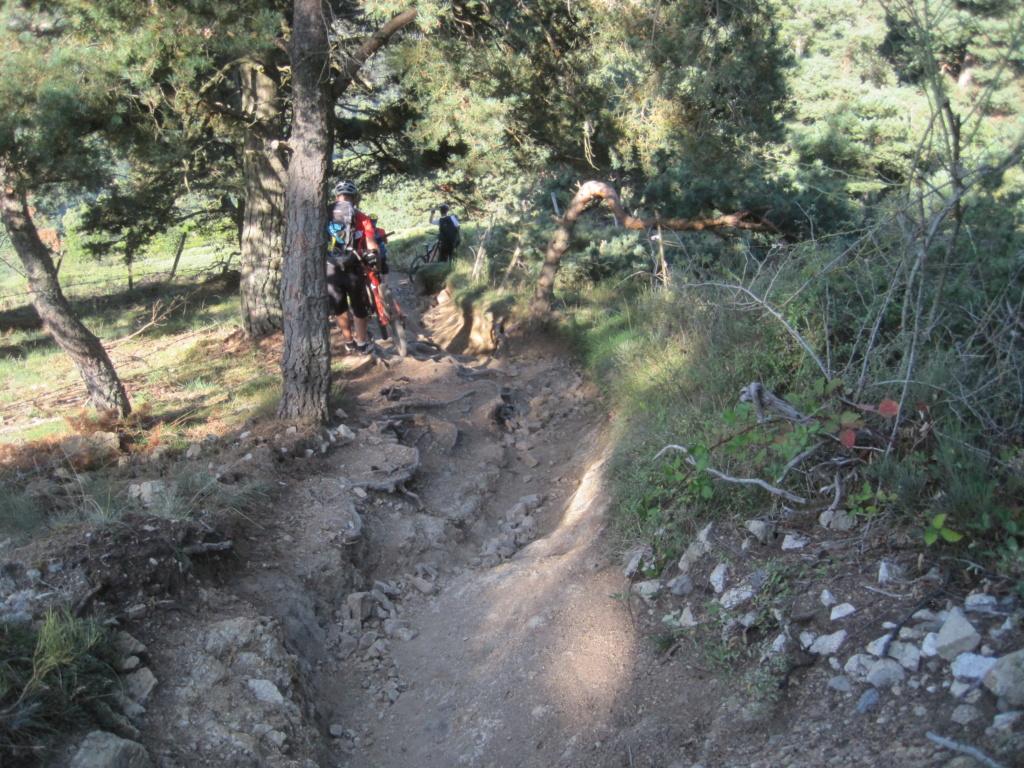 Chemin de Stevenson Img_3042
