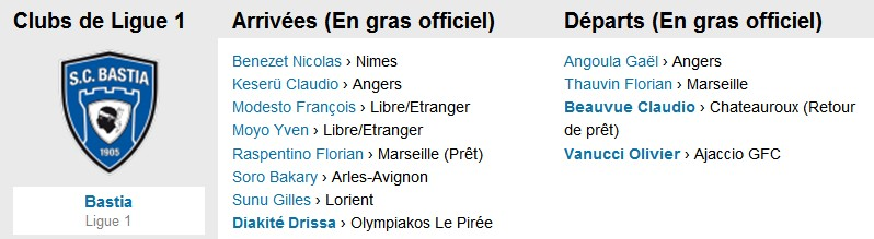 Ligue 1 : Mercato saison 2013-2014 S100