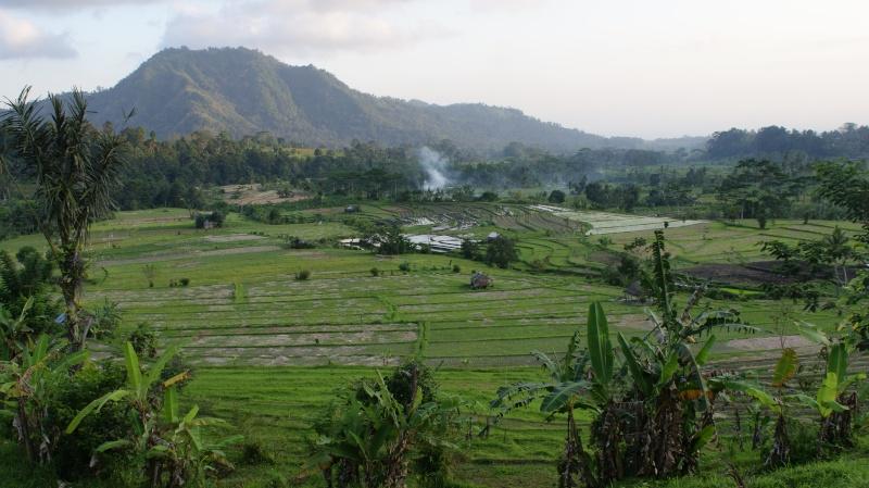 Voyage dans deux ateliers de Bali Dsc07610