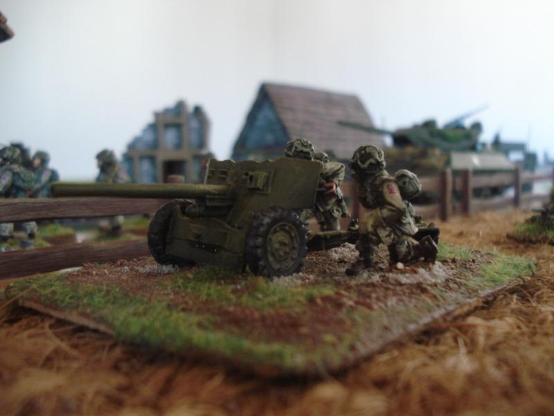 Quelques Armées BOLT ACTION Dsc05827