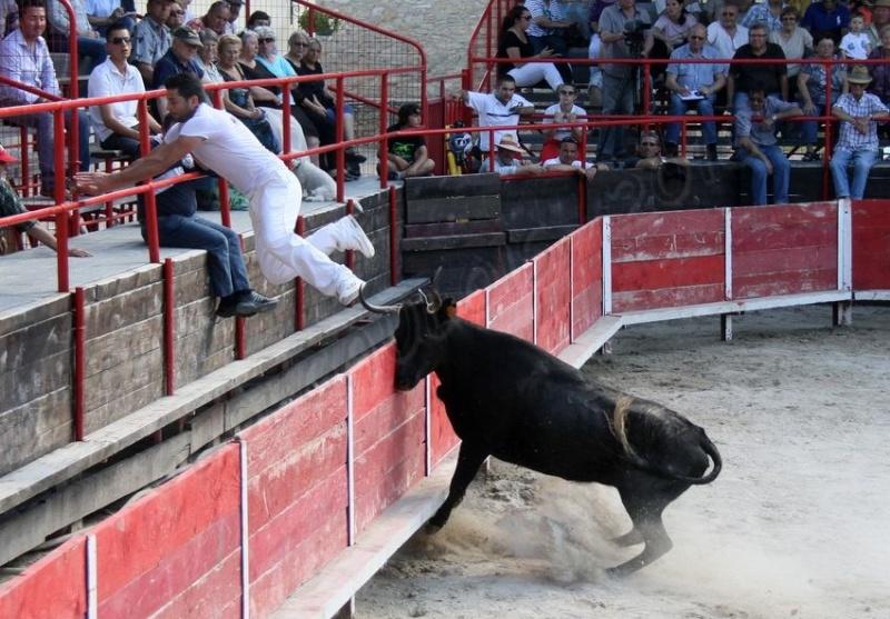 Finale des Présélections Vaches Cocardières - VESTRIC CANDIAC  12-06-2013 Finale11