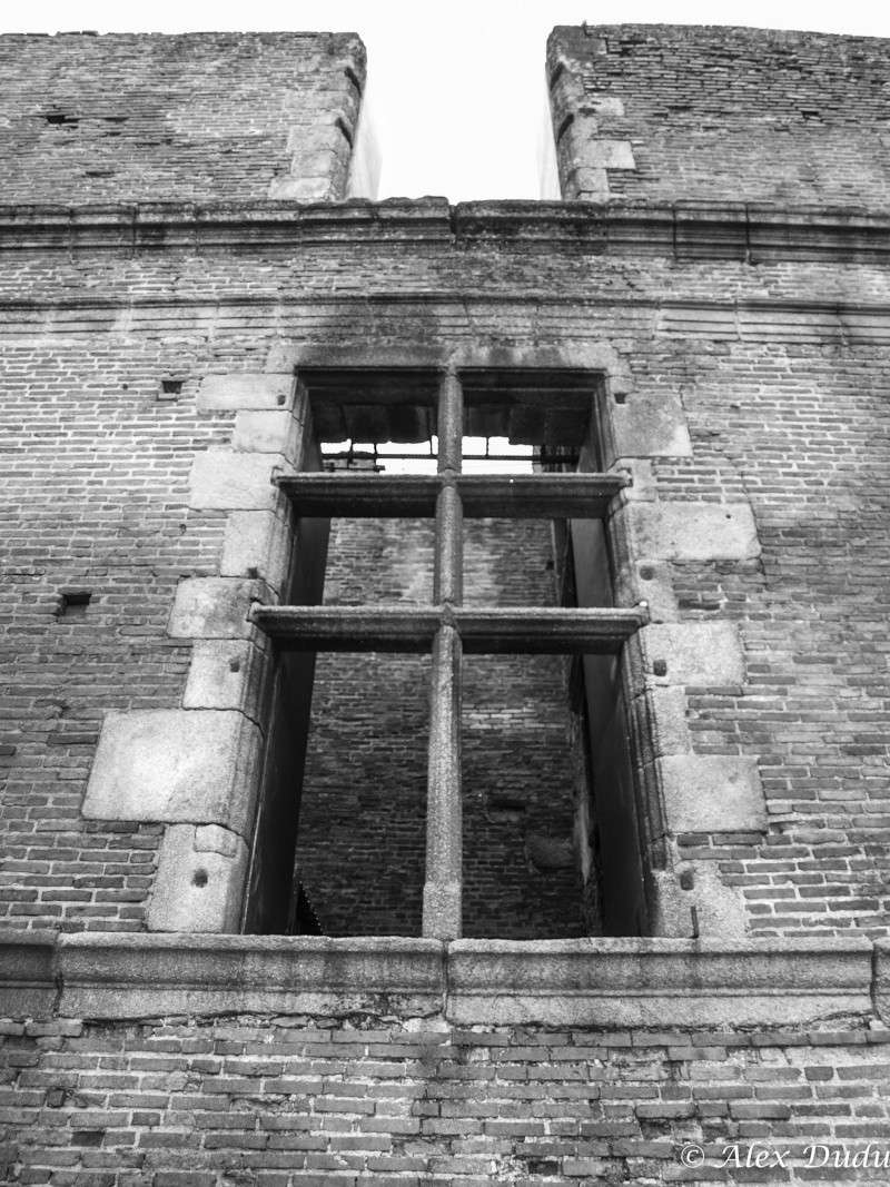 Ruine d'une fenêtre!!! P5118312
