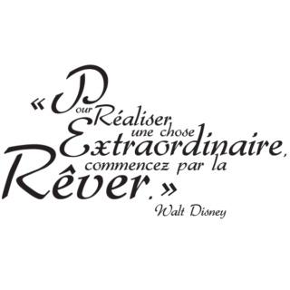 [Pré-Tr] CA Mini Road Trip / Disneyland Resort / Universal / Six Flag (2023/2024?), Que la magie continue !  D3fe3f11