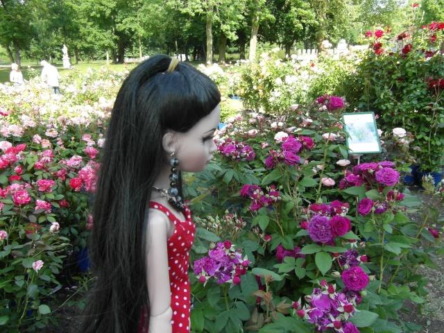 les journées de la rose à Fontaine Chaalis  dans l'Oise Sam_6510