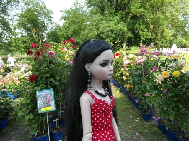 les journées de la rose à Fontaine Chaalis  dans l'Oise Sam_6511