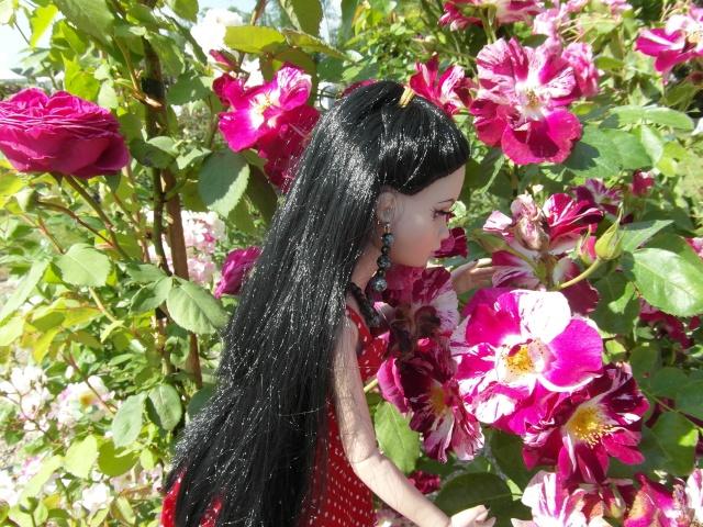 les journées de la rose à Fontaine Chaalis  dans l'Oise Sam_6513