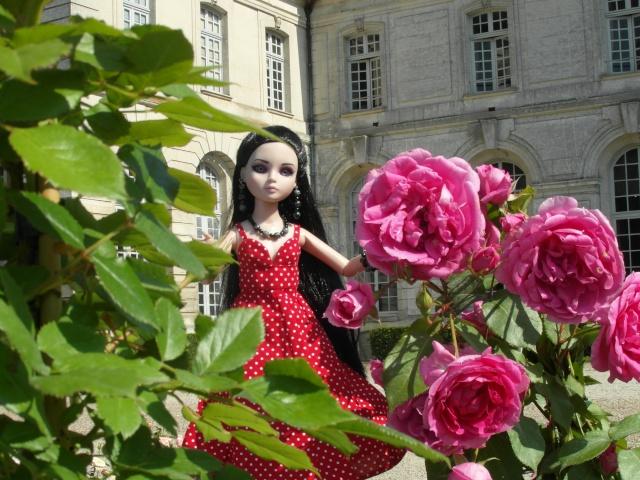 les journées de la rose à Fontaine Chaalis  dans l'Oise Sam_6514