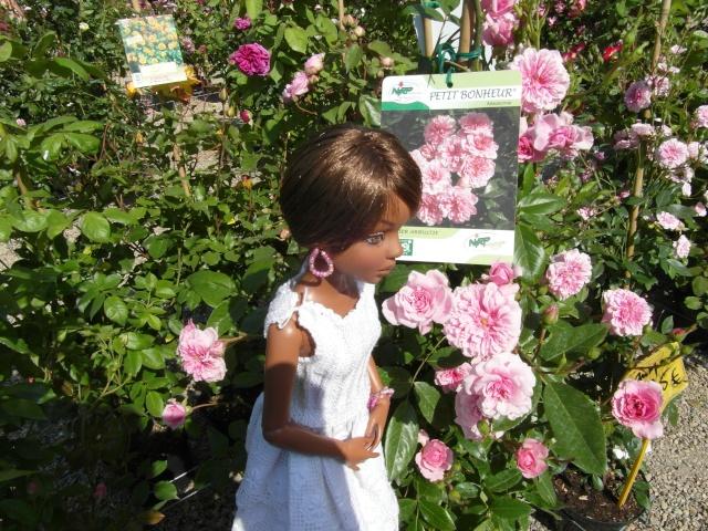 les journées de la rose à Fontaine Chaalis  dans l'Oise Sam_6515