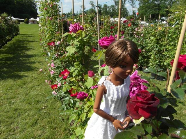 les journées de la rose à Fontaine Chaalis  dans l'Oise Sam_6516