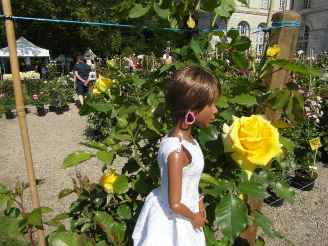 les journées de la rose à Fontaine Chaalis  dans l'Oise Sam_6517