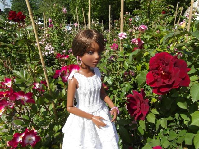 les journées de la rose à Fontaine Chaalis  dans l'Oise Sam_6518
