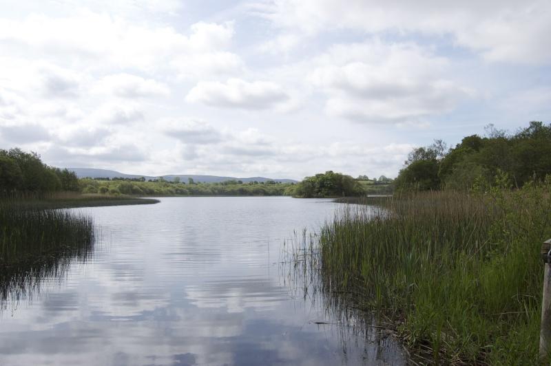 Irlande 2013... Dsc_0015