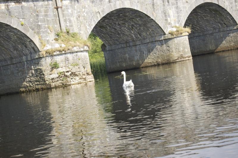 Irlande 2013... Dsc_0111