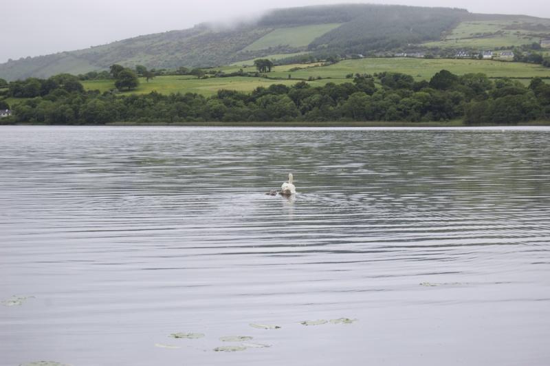 Irlande 2013... Dsc_0217