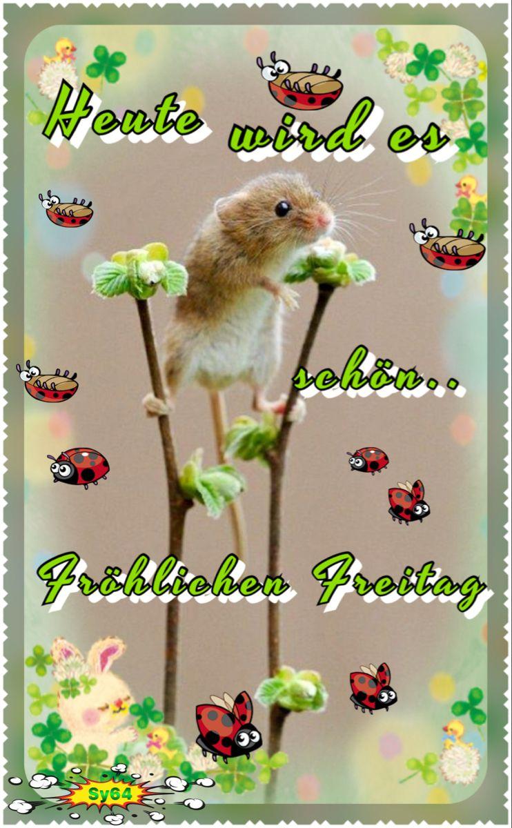 Schönes Wochenende! - Seite 20 9837ba10