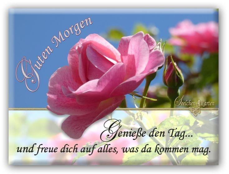 Alles Gute Gisela Img-2041