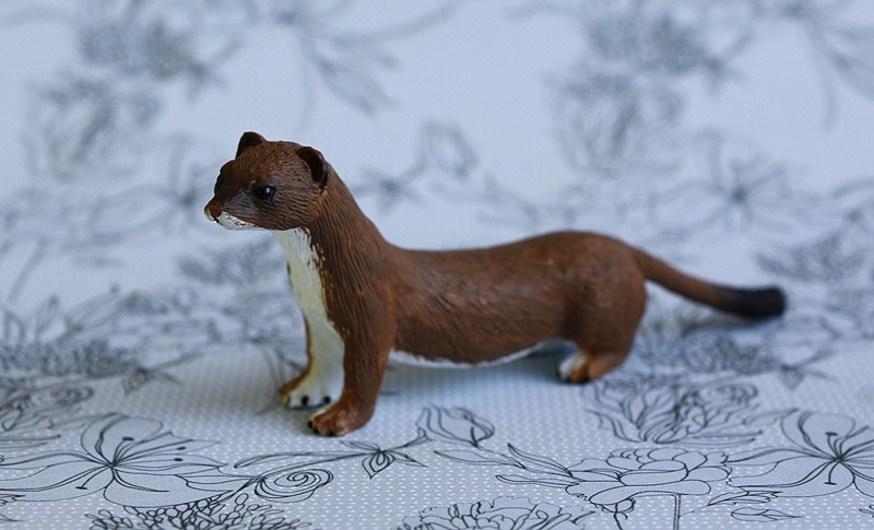 Mojo fun stoat walkaround by Ana _mg_4924