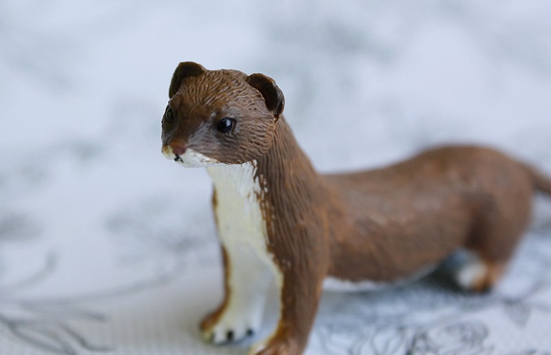 Mojo fun stoat walkaround by Ana _mg_4930