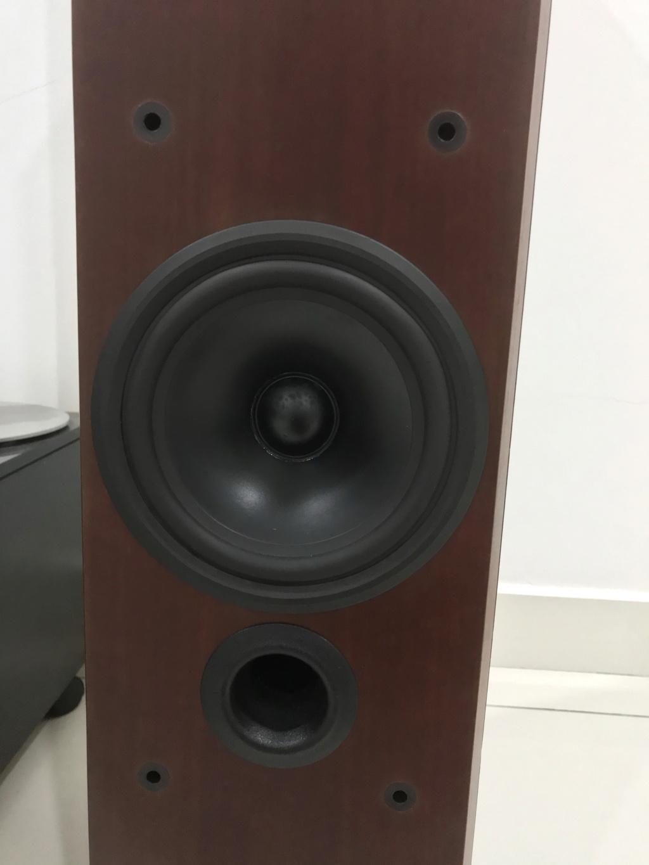 Bowers & Wilkins Preference Series P6 Floorstanding Speaker Bw_p6-43