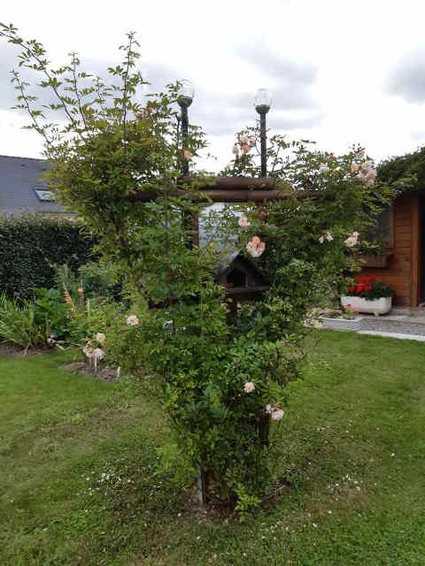 Le Jardin de Petit Louis 2021 - Page 8 20210829