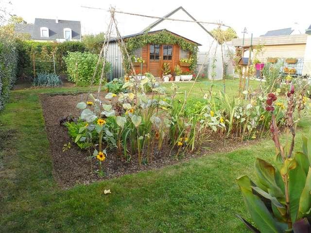Jardin de Petit Louis 2019 - Page 12 Jardin31