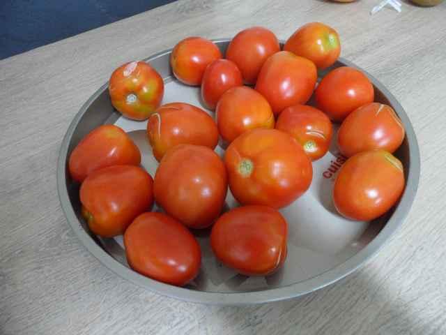 Tomates 2018 - Page 18 Sam_4555