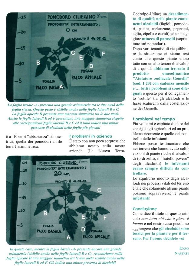Come ridurre gli alcaloidi nelle piante - Ricerca EUREKA Po10