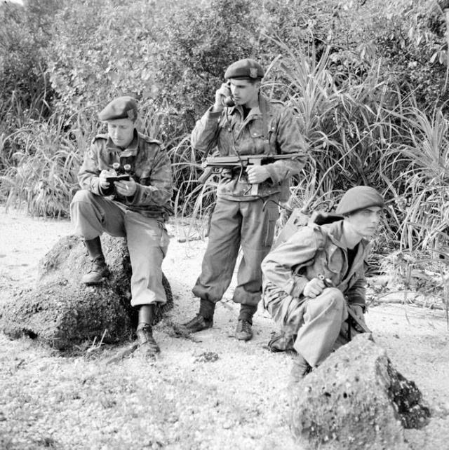 Armes de la Légion Etrangère de 1939 a 1979 . 97060510