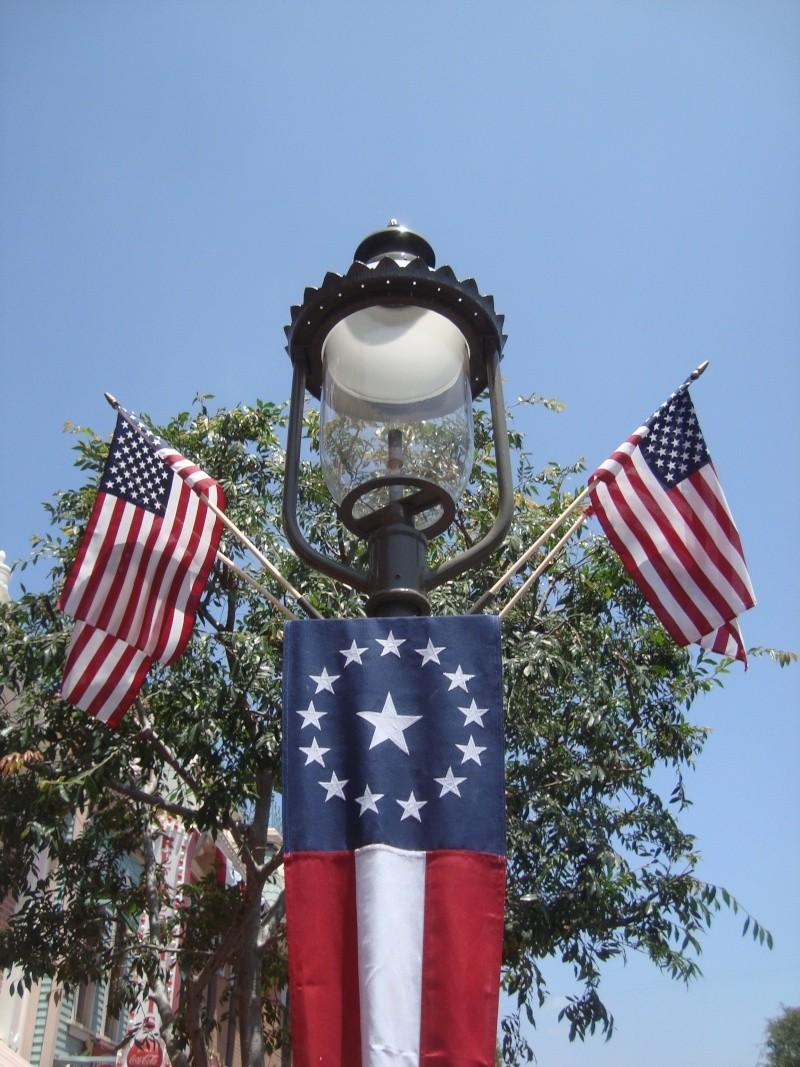 Vos plus belles photos de Disneyland Resort - Page 4 Dsc00316