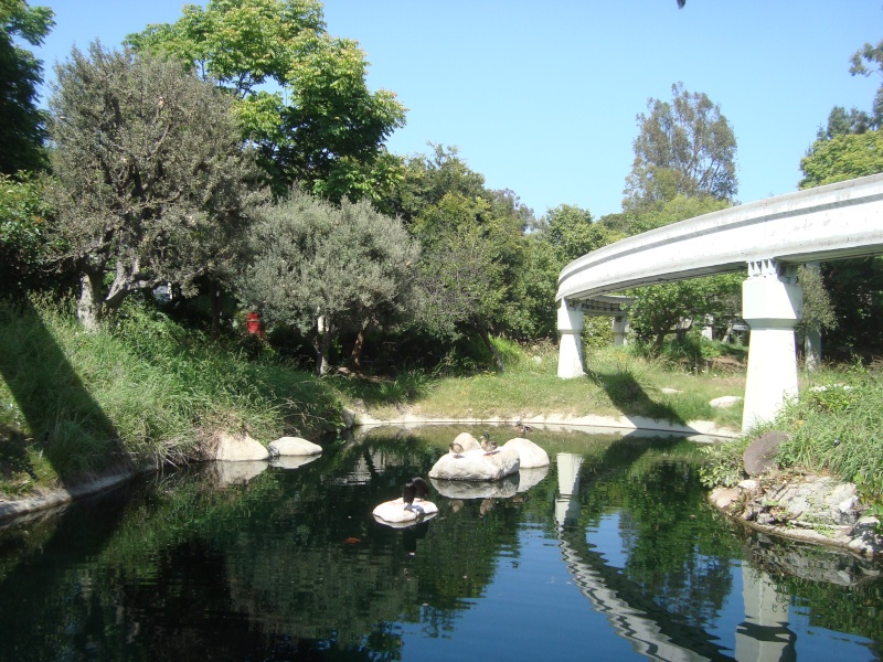 Vos plus belles photos de Disneyland Resort - Page 4 Dsc00320
