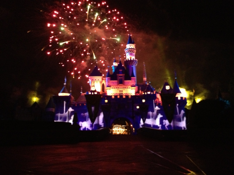 Vos plus belles photos de Disneyland Resort - Page 3 Img_2010