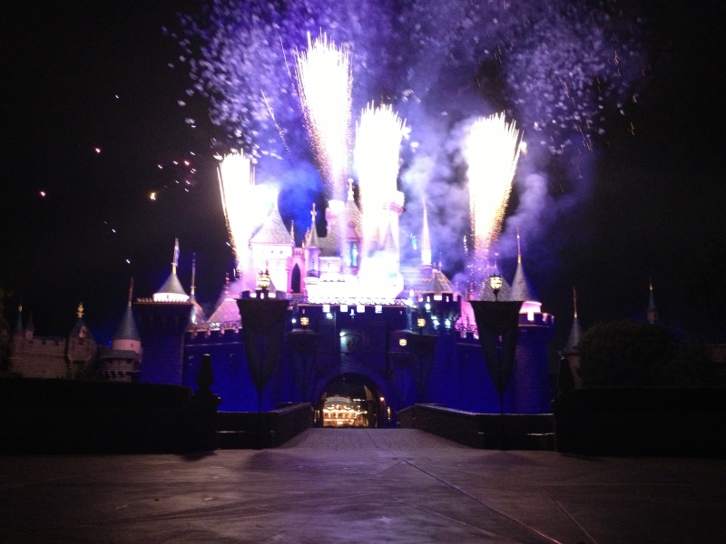 Vos plus belles photos de Disneyland Resort - Page 3 Img_2013