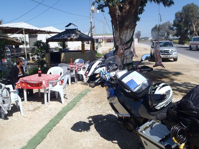 un petit bonjour de Tunisie P5060010