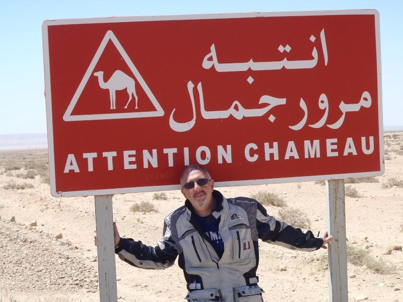 un petit bonjour de Tunisie P5090010