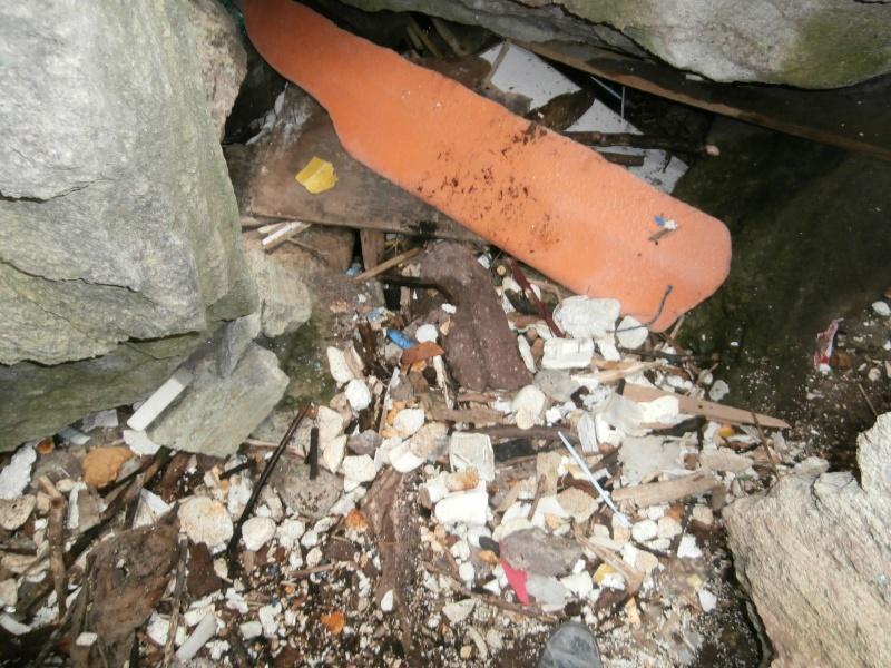 Journées de la mer : opération nettoyage du littoral le 8 juin P6080013
