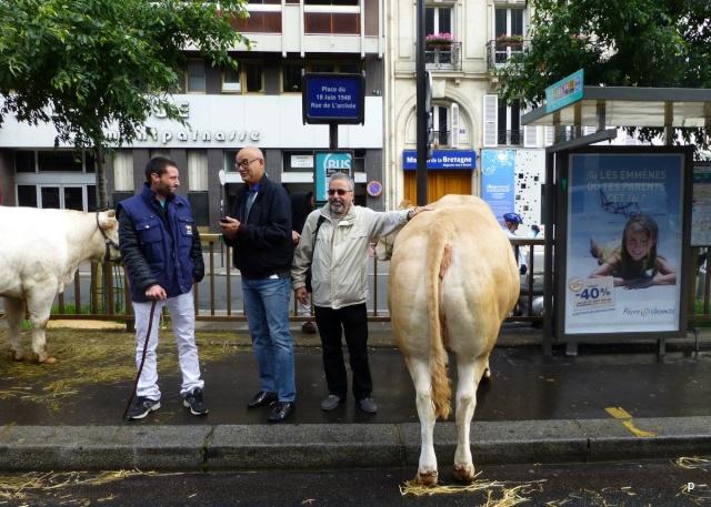 Lâcher de cochons devant la gare Montparnasse Manifp12